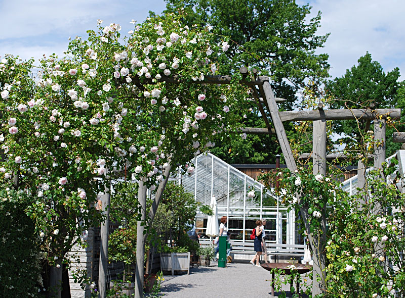 Djurgarden with attractions as Vasa museum and Rosendal